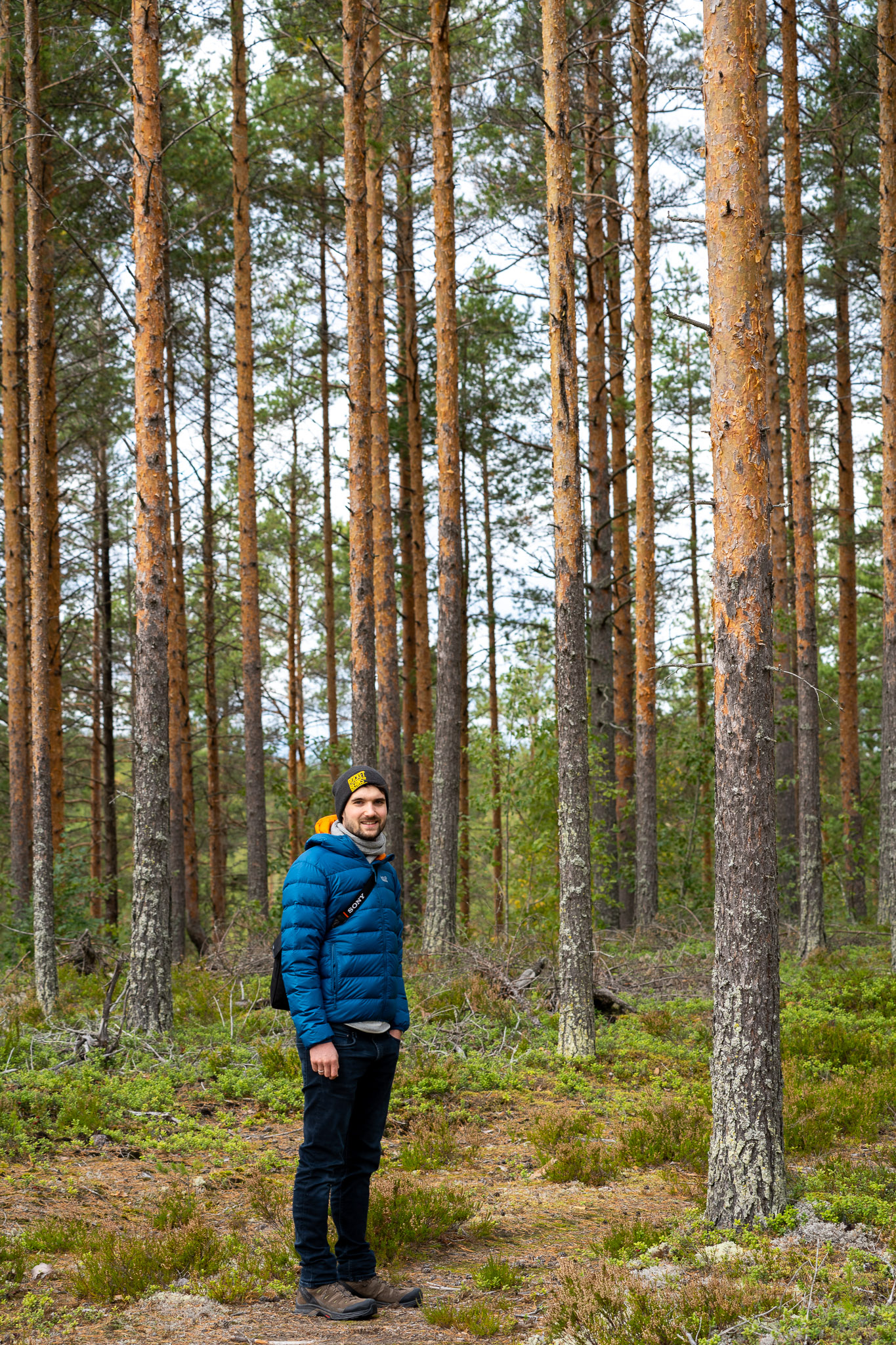 Lukas im Wald