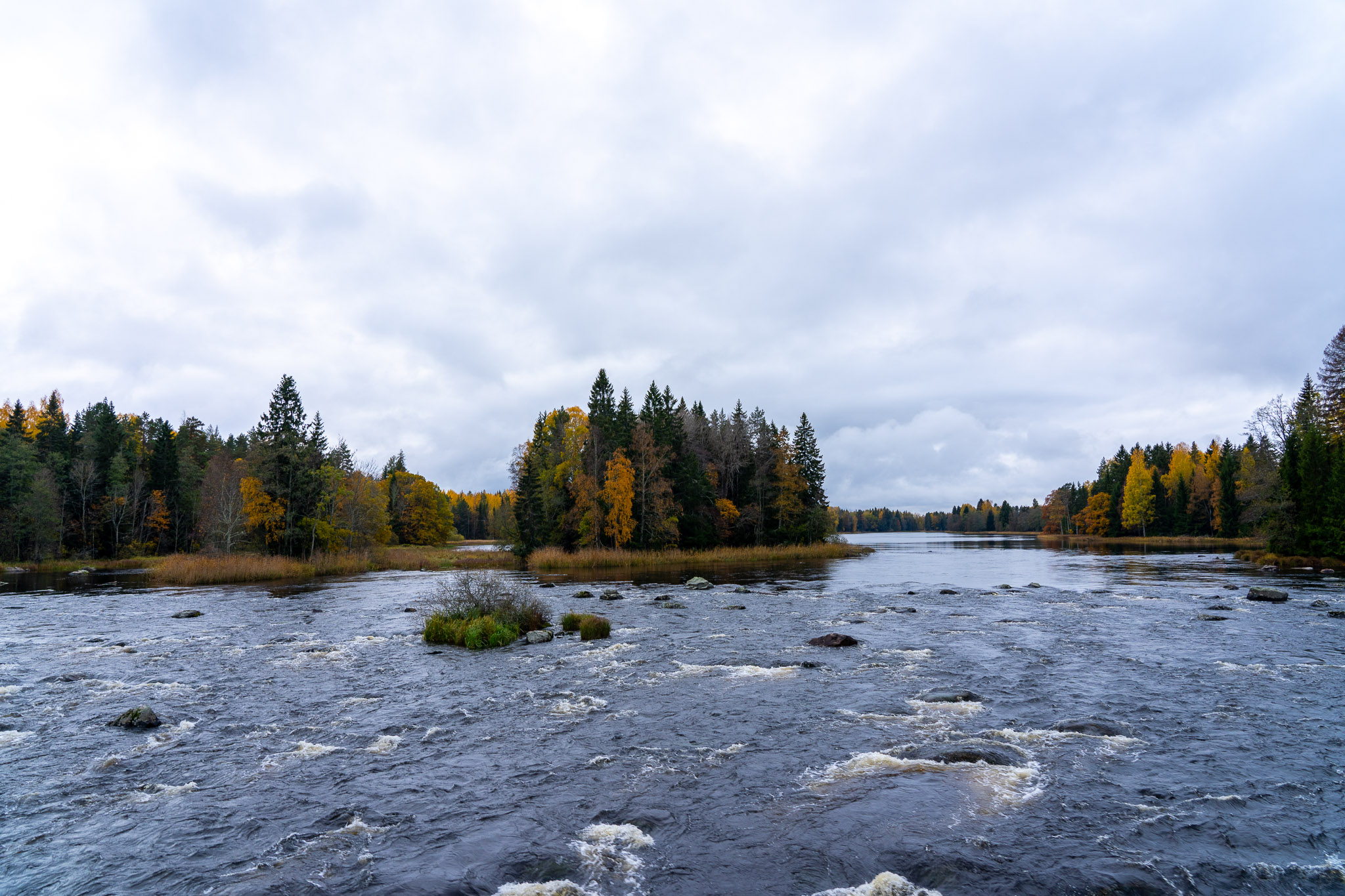 """Nationalpark """"Färnebofjärden"""""""