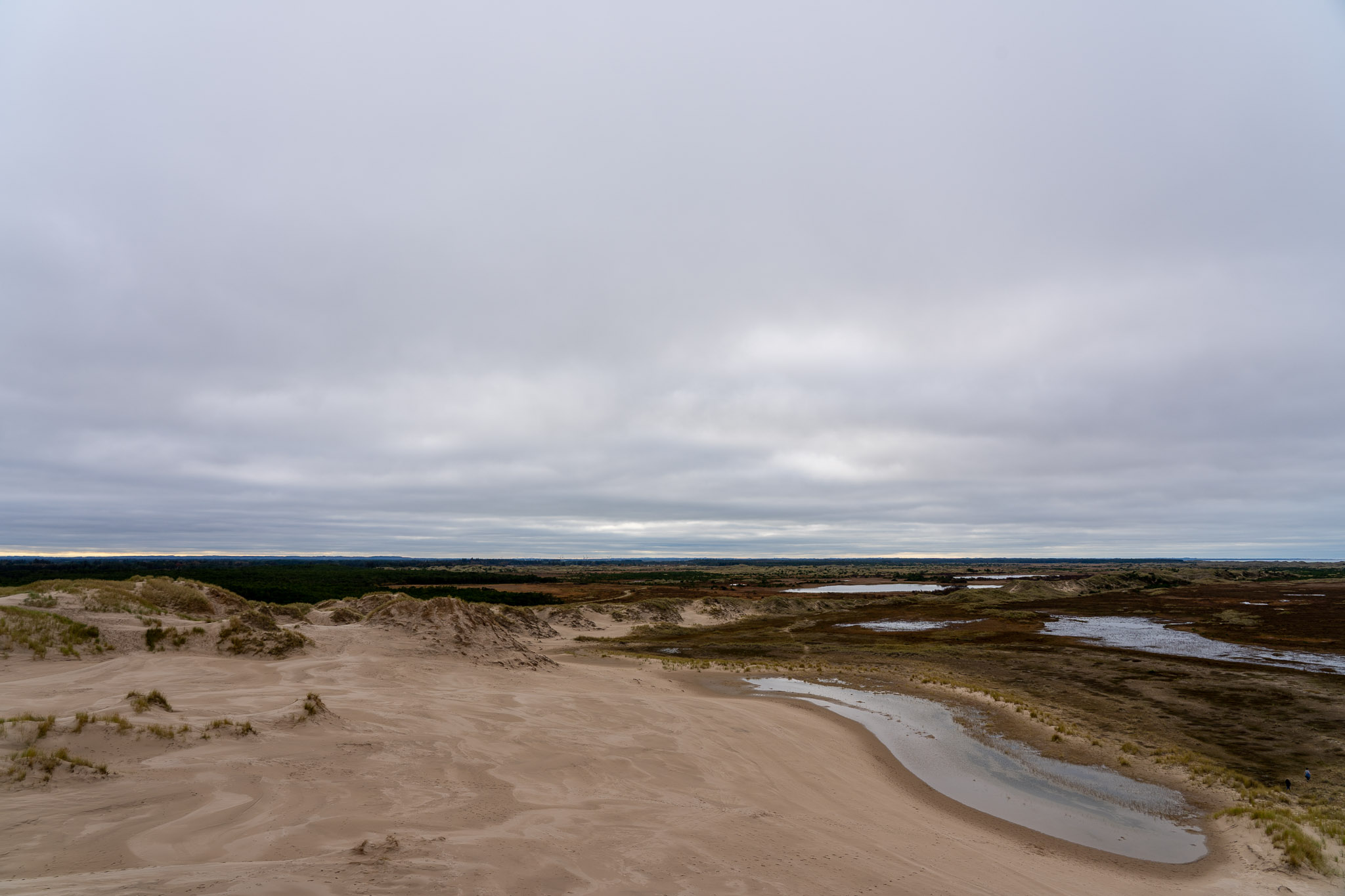 Råbjerg Mile
