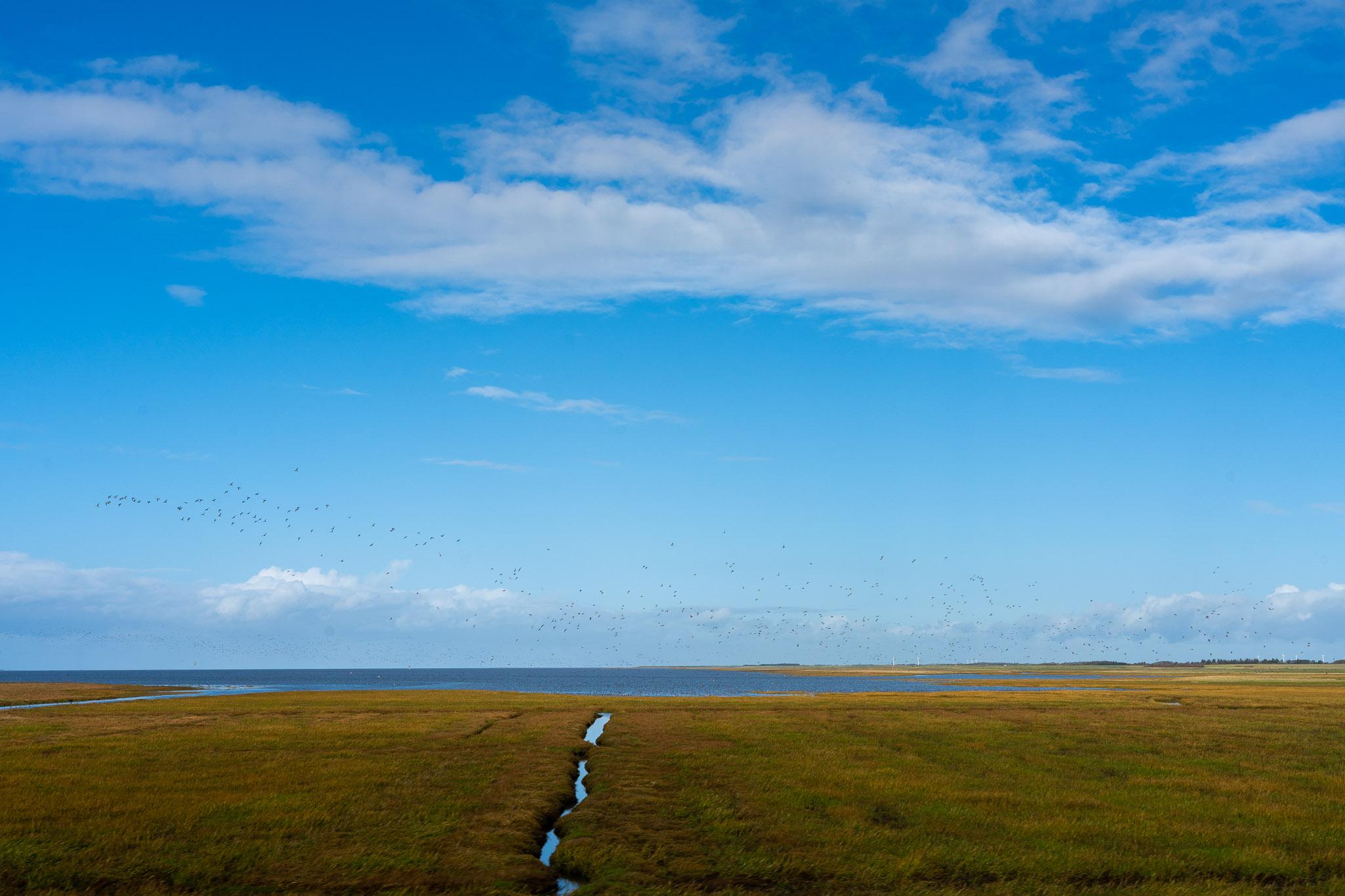 Damm zwischen dem Festland und Rømø